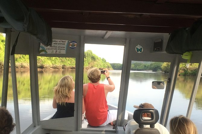 River Boat Tour at Palo Verde National Park - Wild life observation photo 6