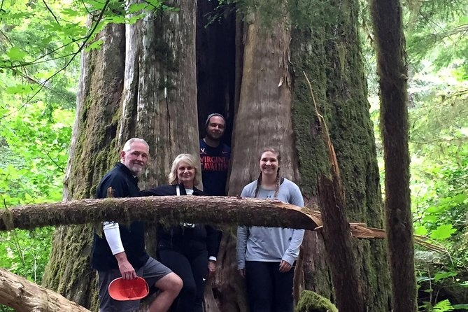 The Mt St Helens Adventure Tour from Portland