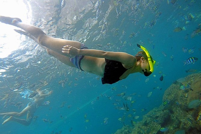 Phi Phi Snorkeling Day Trip by Speedboat Including Buffet Lunch