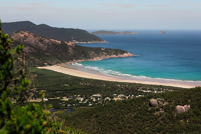 Wilsons Promontory Day Trip from Melbourne photo 6
