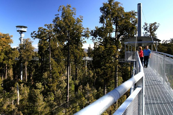 Explore Hokitika Gorge and Tree Top Walkway