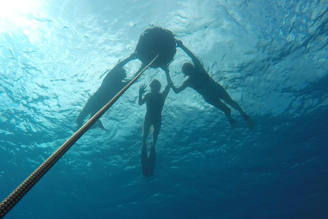 Discover Freediving in just a day photo 2