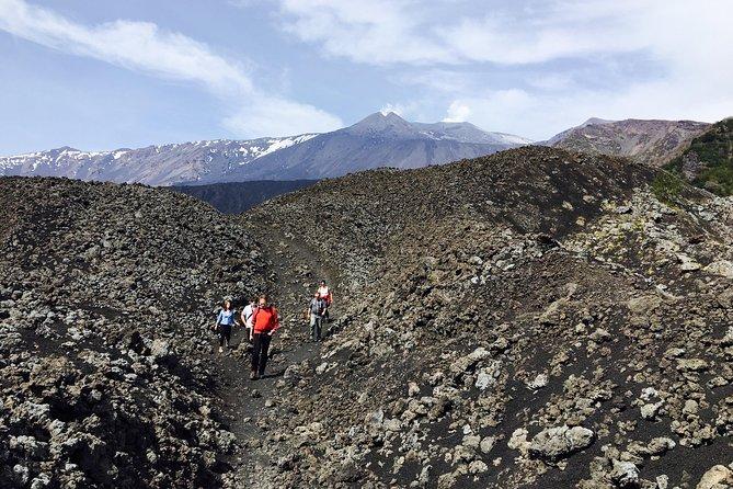 Mount Etna Half day Jeep 4x4 Tour from Catania or Taormina