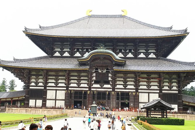 Amazing Tour of 8th Century Capital Nara photo 6
