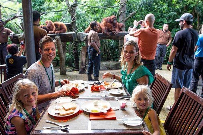 Breakfast with Orangutan + Ubud Tour