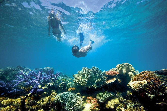 Blue Lagoon Snorkeling and Ubud Tour