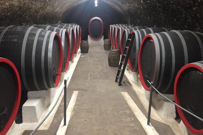 Excursão privada de vinho, comida e patrimônio de Praga à Boêmia