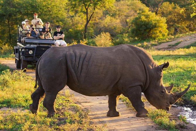 Luxury Kruger Park & Panorama Route Safari, South Africa