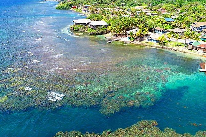 Roatan Shore Diving Experience, Island Lunch & Transportation