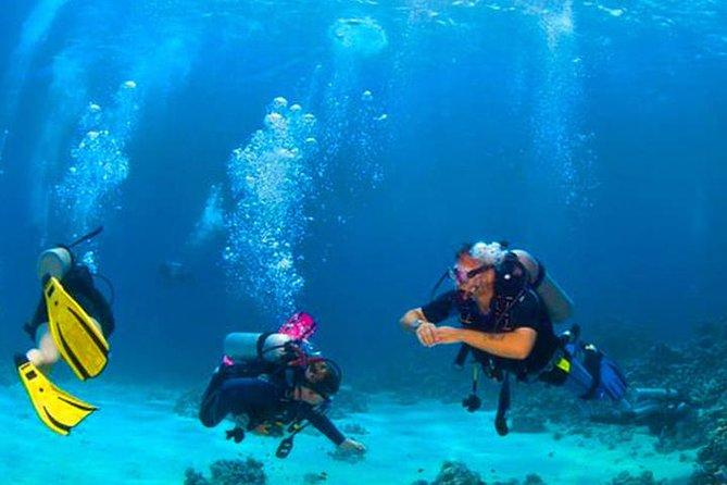Roatan Reactive-Refresher Dive Course