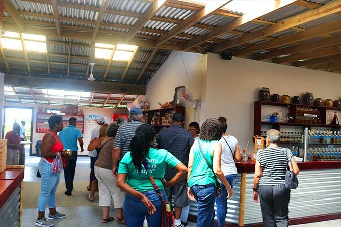 Roatan Sightseeing to the Chocolate, Cameo, Cigars & Rum Factories photo 8