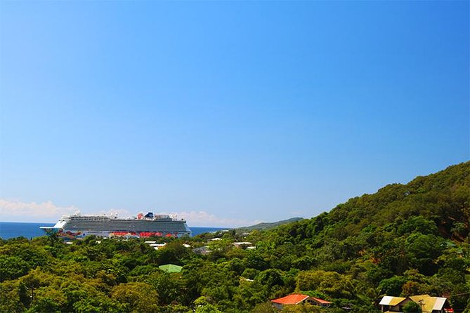 Roatan Sightseeing to the Chocolate, Cameo, Cigars & Rum Factories photo 13
