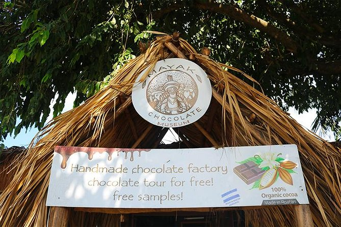 Roatan Sightseeing to the Chocolate, Cameo, Cigars & Rum Factories photo 16