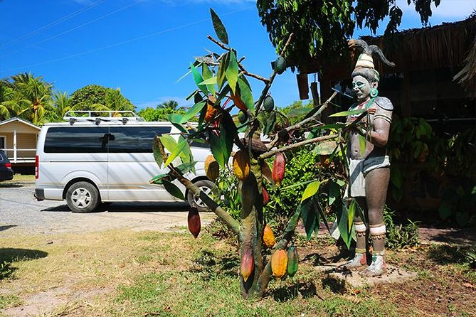 Roatan Sightseeing to the Chocolate, Cameo, Cigars & Rum Factories photo 3