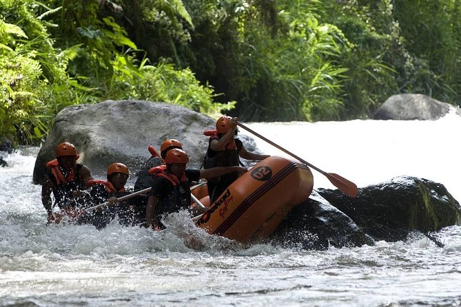 Bali White Water Rafting All Inclusive With Transportation and Lunch photo 12