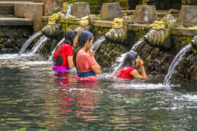 Private Tour: Ubud Village and Temples Tour