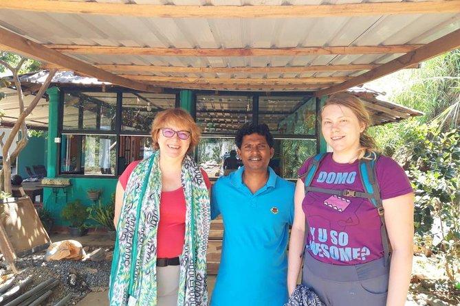 Day Tours in Sigiriya Rock