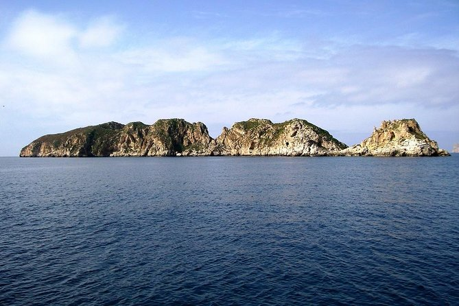 5-hours Cruise to Dragonera Island photo 19