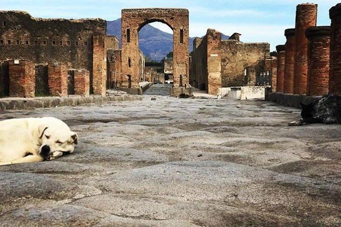 Private Guided Tour. Experience the Everyday Life of the Eternal town of Pompeii