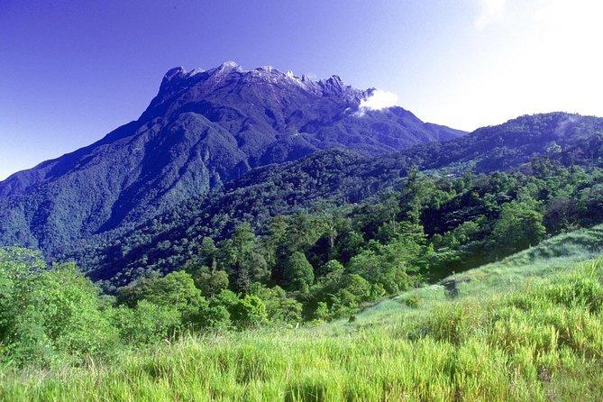 Kinabalu National Park (World Heritage Site) Tour from Kota Kinabalu