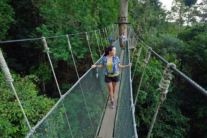 Poring Hot Springs Tour from Kota Kinabalu including Treetop Canopy Walk
