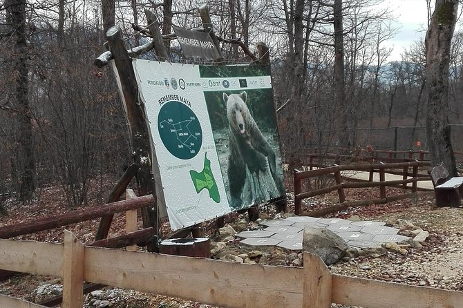 LiBEARty - the Brown Bear Sanctuary from Zarnesti