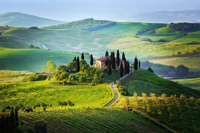 Tuscany from Rome , Montepulciano & Pienza with wine tasting and Lunch included