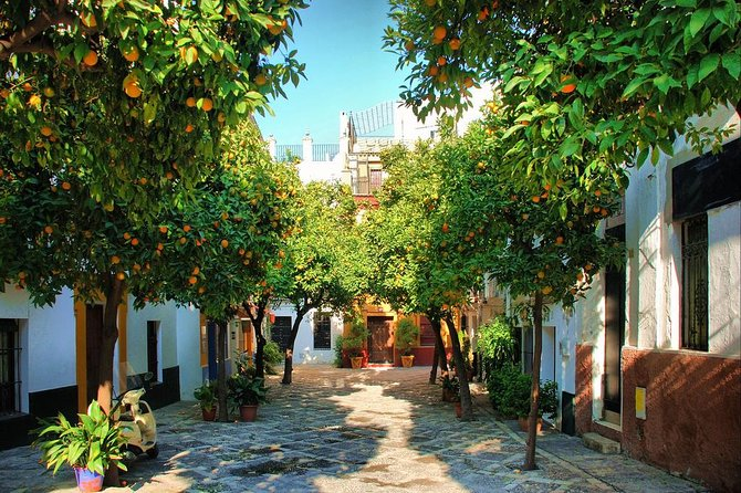 Private Day Trip to Seville from Cadiz