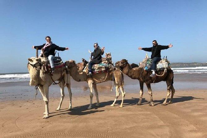 Ride a Camel at the Atlantic Ocean