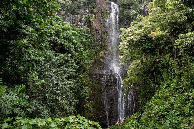 Private Hana Waterfalls Tour