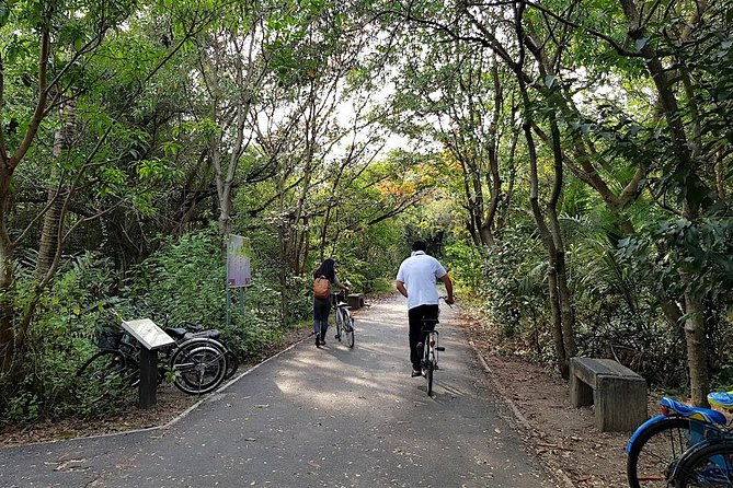 Lost in Bangkok : Green Lung Jungle Bicycle Ride with Lunch photo 22
