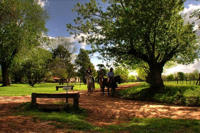 Two days and One night in Areco