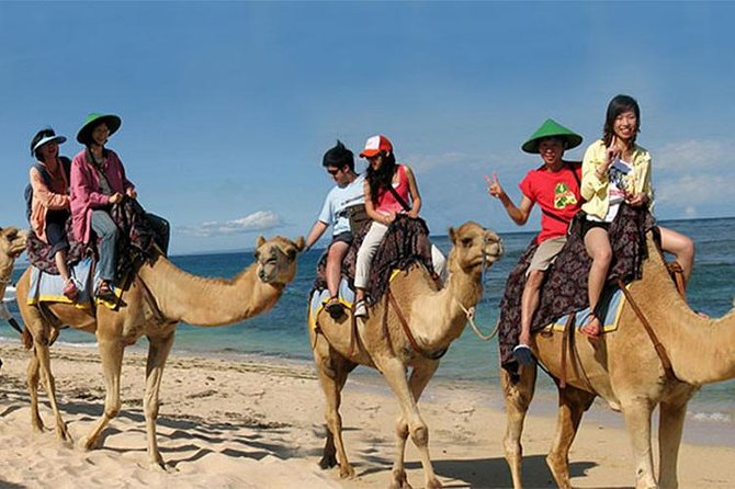 Private Tour Bali Camel Safari One Hour-Water Sport And Lunch At Jimbaran Beach