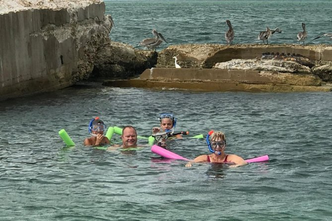 Shared 2 Hours Dolphin Watch Cruise with Snorkeling to Shell Key