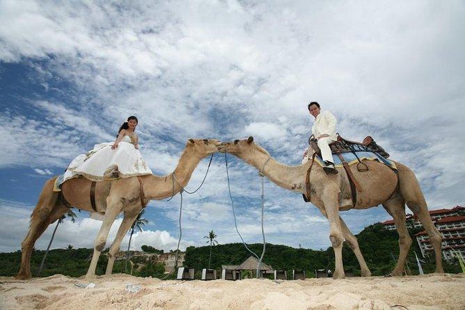 The Best Private Tour 30 Minutes Camel Safari Photo Wedding
