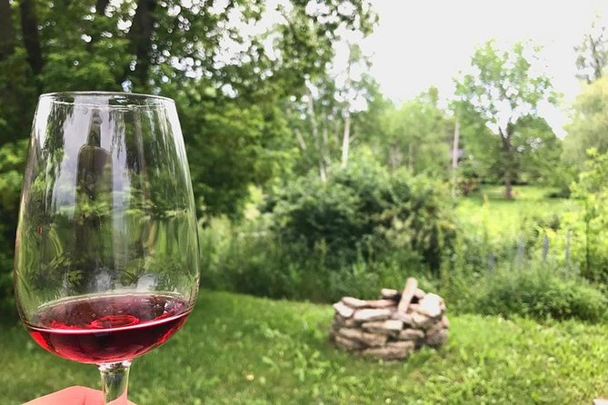 Full-Day Prince Edward County Wine Tour from Toronto -Shared Small Group photo 10