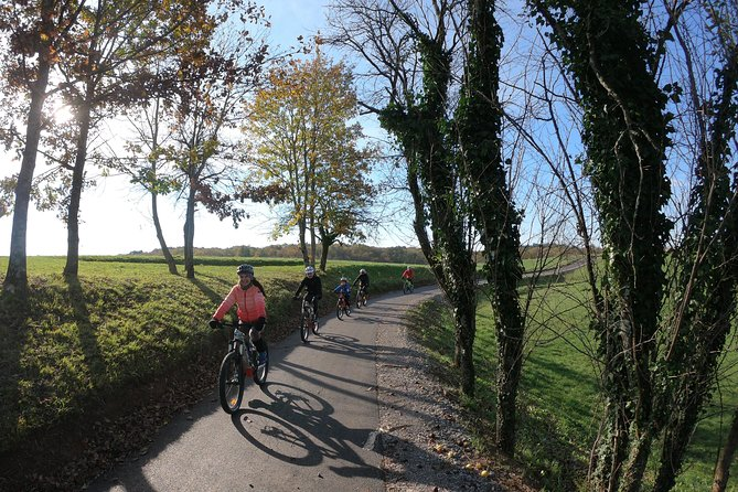 E-bike tour: Explore Kras, the land of prosciutto and teran