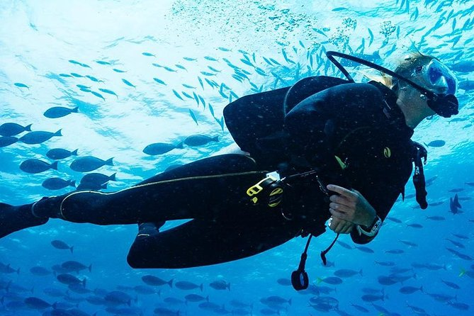 Kota Kinabalu Leisure Diving (Experienced Divers)
