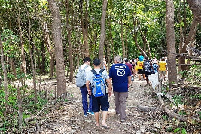 5 dias de passeio pela selva amazônica