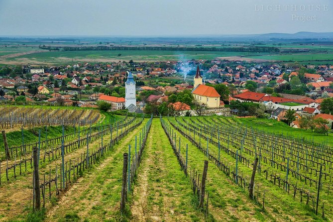 Tokaj Full Day Private Wine Tour from Budapest
