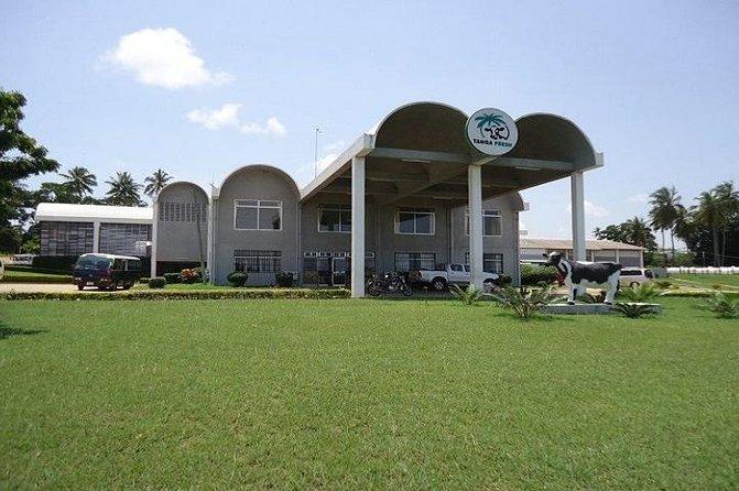 Visit Salt Mining & Milk Processing Plant-From Tanga City-Full Day Tour