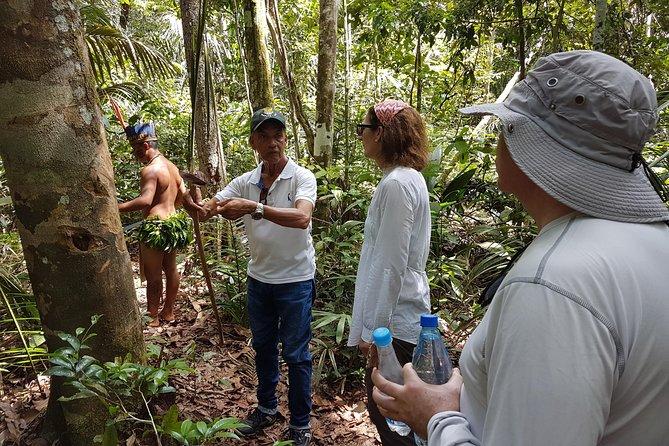 Amazon Forest Tour 4-Hour Trekking