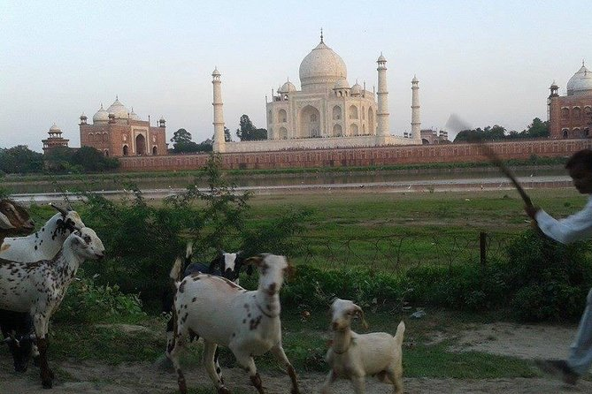 Behind the Taj Mahal with Sunrise or Sunset view by Tuk Tuk Ride photo 8