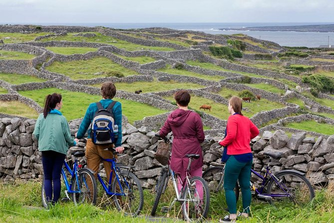 7 Day Stunning South and West Ireland Adventure from Dublin