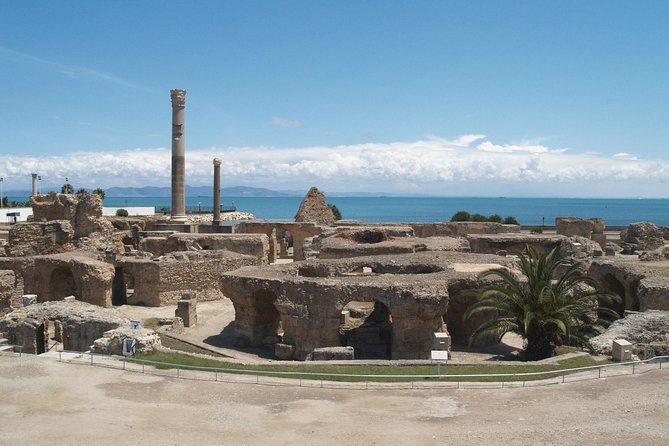 Private Day Tour Tunis Carthage Sidi Bou Said and Bardo Museum