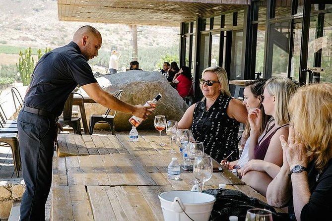All-Inclusive Valle de Guadalupe Mexico Premium Wine + Gourmet Food Tasting Tour