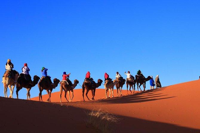 Deserto del Marocco: Gita di 3 giorni e 2 notti da Marrakech: Gruppo condiviso
