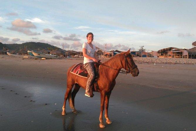 One hour beach horseback ride, see the beauty of the stunning Ecuador coast