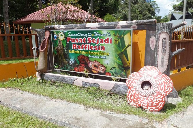 Kota Kinabalu Rafflesia Rainforest Reserve Tour photo 9