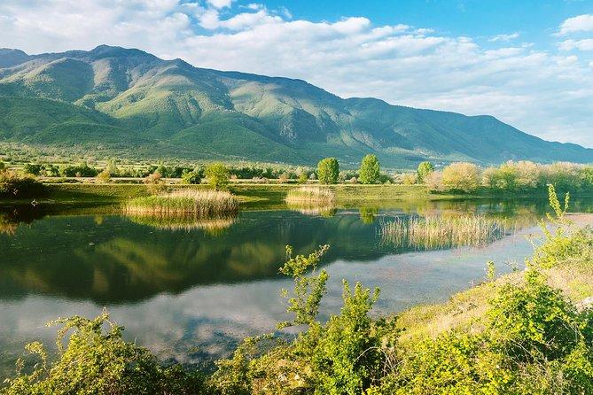 From Thessaloniki: Day Trip to Kerkini Lake